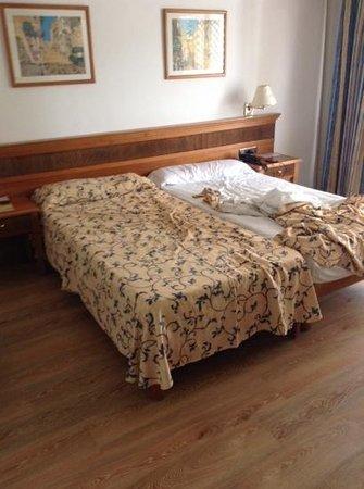 Araxa Hotel : Habitación doble de uso individual