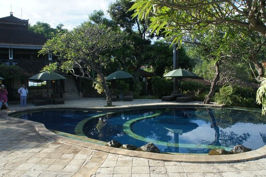 The Damai: La piscine