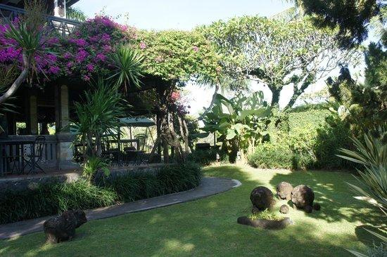 The Damai: Le jardin