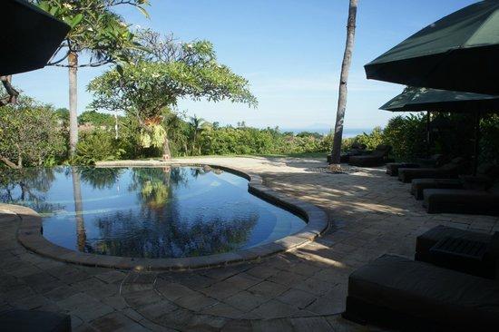 The Damai: La piscine