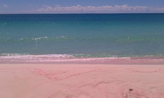 Coco Point: pink sand in Barbuda