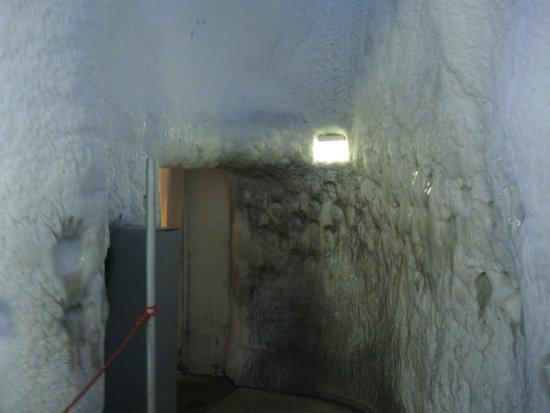 """Klimahaus: Der """"Eis-Gang"""" in der Antarktis"""