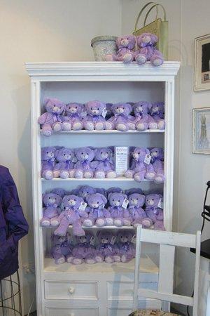 Bridestowe Lavender Estate: Bobbie