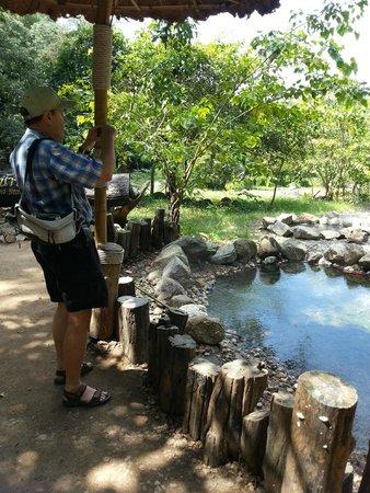 Pai Hot Springs: บริเวณน้ำพุร้อน
