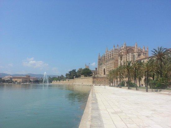 Palma Cathedral Le Seu : на берегу озера