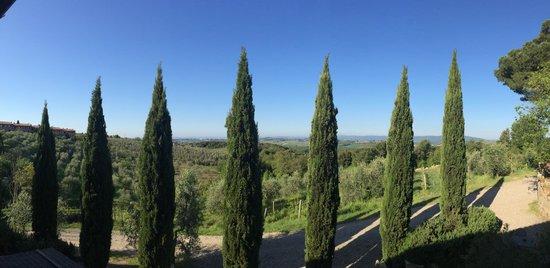 Fattoria di Corsignano: View out of room
