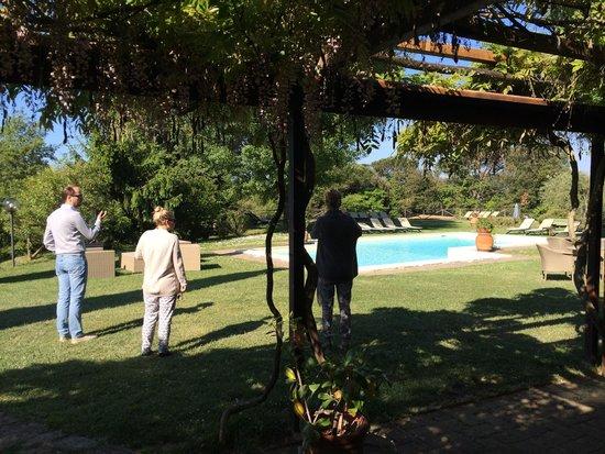 Fattoria di Corsignano: Pool seen from restaurant