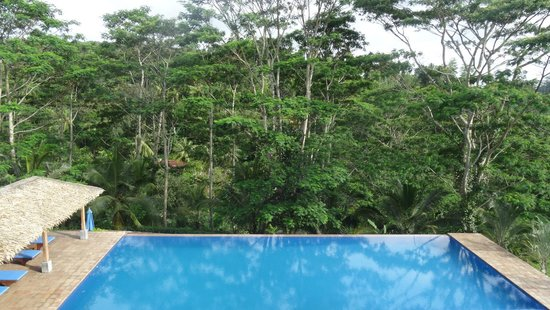 Niyagama House : La vue depuis la galerie du 1er étage