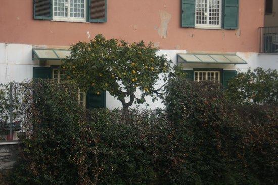 Aurelia Residence San Pietro: View from the balcony