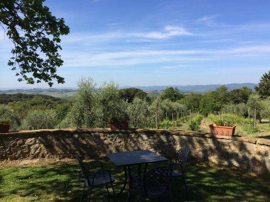Fattoria di Corsignano: View from reception in direction of Siena