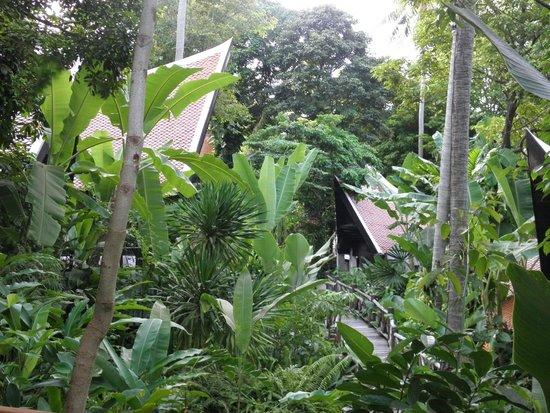 Marina Phuket Resort: Домики джангл