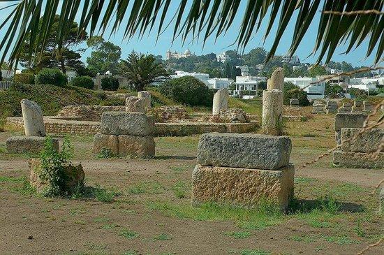 Punic Ports & Museum: Tunisia: colonne e resti