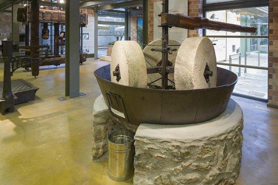 Museo de la Aceituna y del Aceite de Oliva Griego: Μουσείο Ελιάς και Ελληνικού Λαδιού