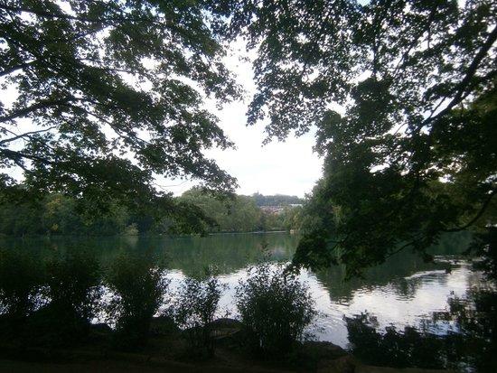 Parc de la Tête d'Or : Lago