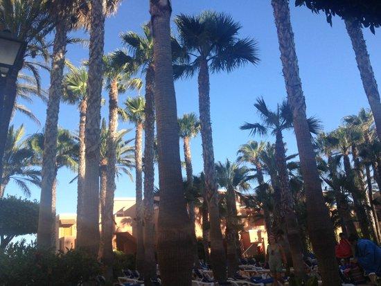 Playacapricho Hotel: Suite playa - edificios.