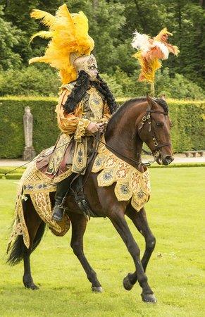 Château de Vaux-le-Vicomte : Expert Horsemanship