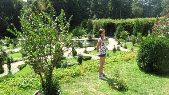 Sanssouci Palace: garden view