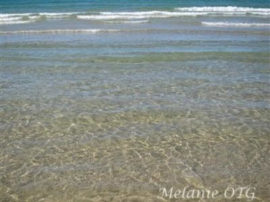 Sauble Beach: water is beautiful tint/ color of turquoise
