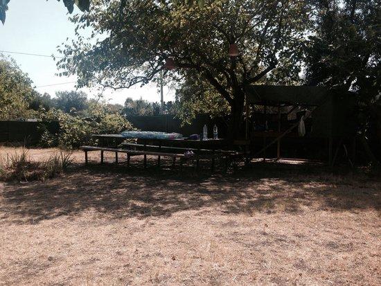 Eden Park Selfotel - Parco Vacanze: Lana tenda