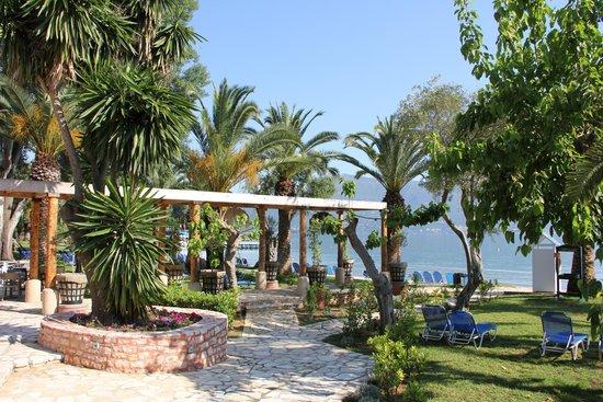 Daphnila Bay Thalasso: Вид который открывает из бунгало, а также из ресторана на пляже отеля