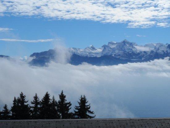 Mt. Rigi: vista