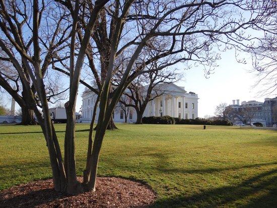 White House: Foto de frente