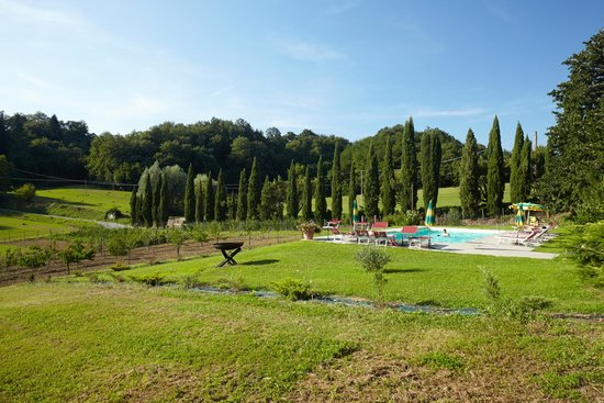 """Agriturismo """"La Topaia"""" : swimmingpool area"""