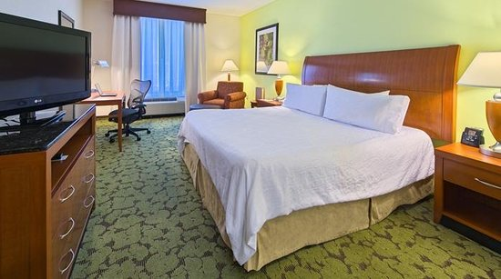Hilton Garden Inn Tallahassee Central: King Guest Room