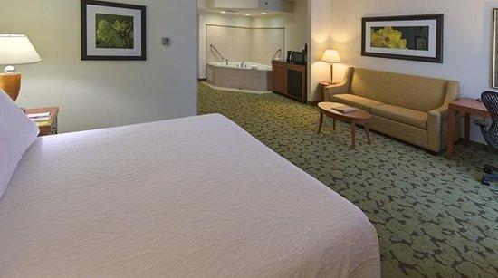Hilton Garden Inn Tallahassee Central: King Whirlpool