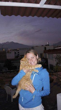La Casa de Ana-Peru : Caramelas the Cat