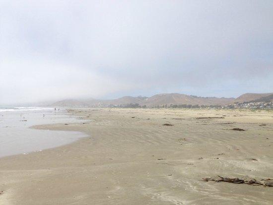 Morro Strand State Beach: La spiaggia di Morro Bay