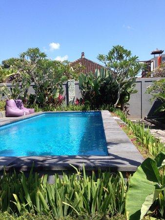 La House : Pool