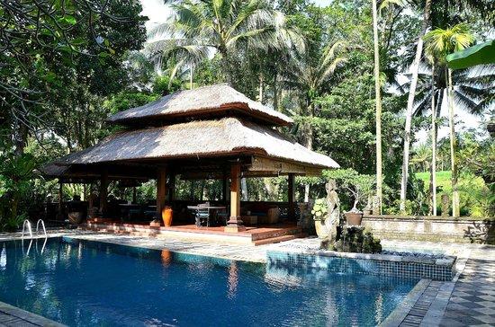 Arma Museum & Resort: piscine