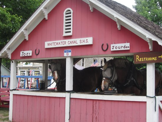 Metamora, IN: The horses they use to pull the barge