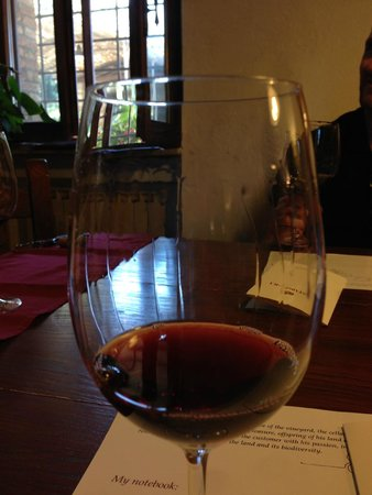 Wine Tour in Tuscany: fine wine