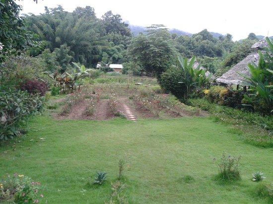 Pai Vimaan Resort: Part of the garden