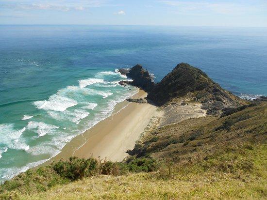 Salt Air Tours: At Cape Reinga during trip