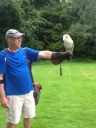 "Dalhousie Castle Falconry : Jeff and Ava ""love at first flight!"""