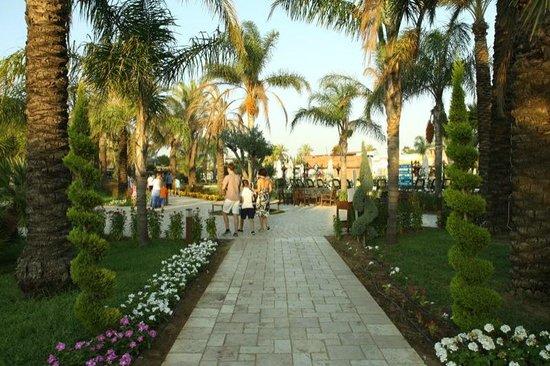 Club Calimera Serra Palace : Teren hotelu, koło bungalowów