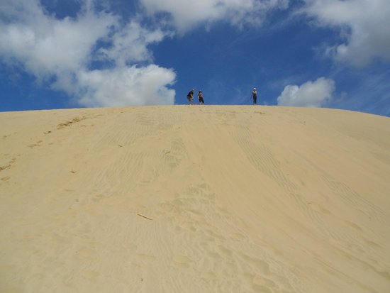 Salt Air Tours: Stop to try surfing at Te Paki Sand Dunes