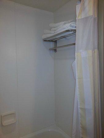 Hilton Garden Inn Birmingham / Lakeshore Drive: Towel Rack Inside The Shower ?