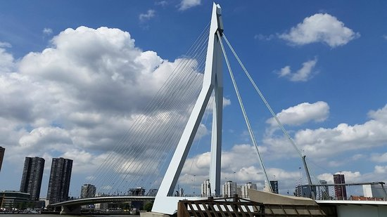 Erasmus Bridge: Ponte Erasmus, Roterdão.
