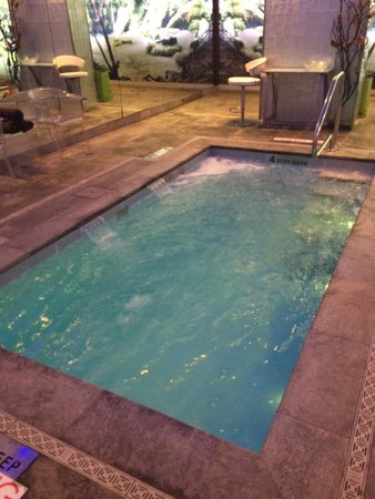The Chatwal, A Luxury Collection Hotel, New York: Current Pool