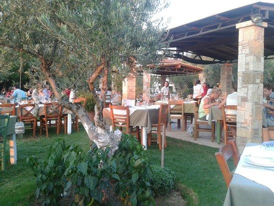 Hotel Europa Olympia: Taverne dans le jardin