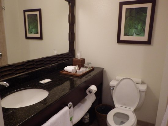 Courtyard by Marriott King Kamehameha's Kona Beach Hotel: bathroom