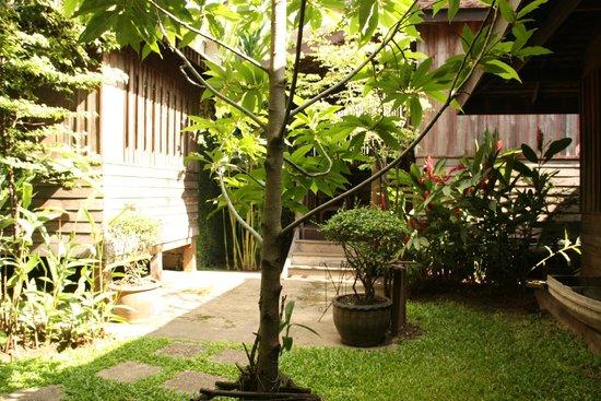 Tanita House: Giardino