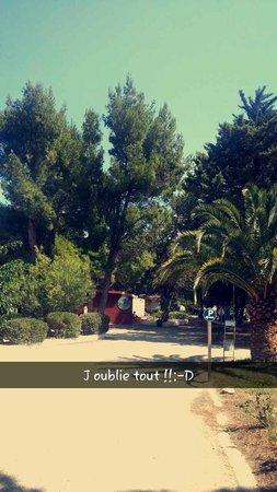 Vacances Popinns - Les Abricotiers : club vacances argeles sur mer
