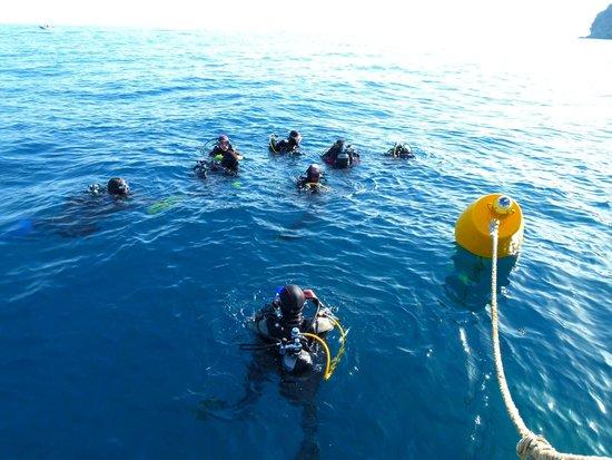 Elba Divers Naregno