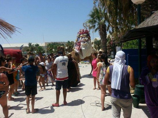 Iberostar Mehari Djerba: Tunisian wedding