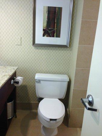 Hyatt Regency Houston Intercontinental Airport : bathroom